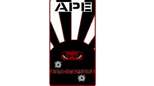 ASSOCIATION Airsoft:APE: ACTION PROTECTION ESPIONNAGE