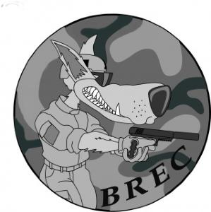 ASSOCIATION AIRSOFT : BREC AIRSOFT TEAM