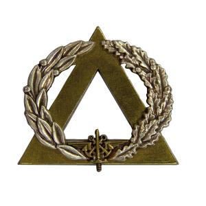 INSIGNE PIN'S BREVET SECOURISTE BRANCARDIER BRONZE EN METAL ATTACHE CLOU LAITON